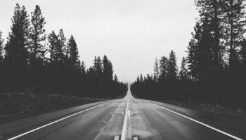 camino-blanco-y-negro-de-bosques_442-19321742-min